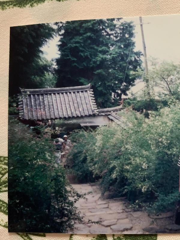 萩の寺 _b0408892_08150199.jpg