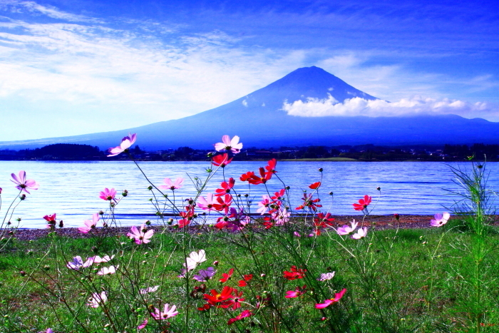 令和2年9月の富士(12) 河口湖長崎公園の富士_e0344396_17253463.jpg