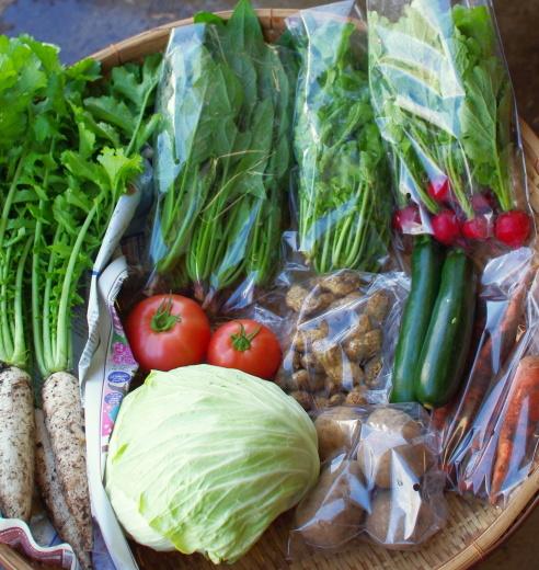 今週の野菜セット(9/29~10/3着)_c0110869_12480502.jpg