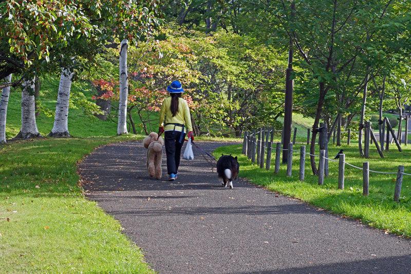 緑道公園_d0162994_08555981.jpg