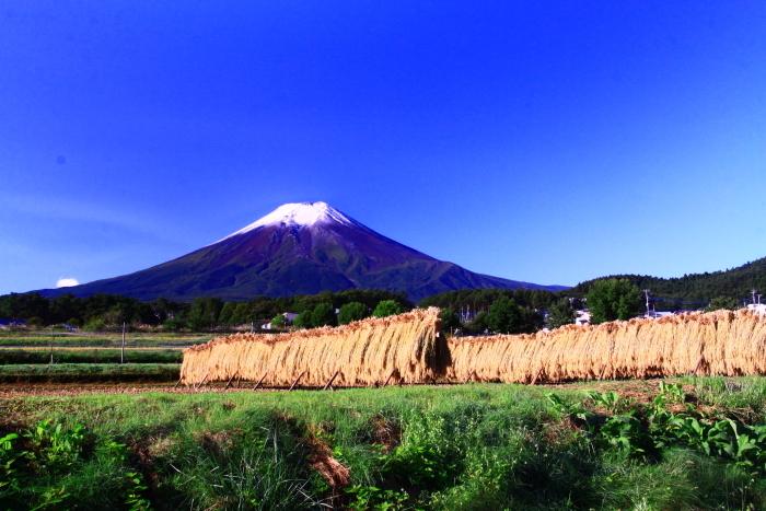 令和2年9月の富士 番外編 富士山初冠雪_e0344396_20281300.jpg