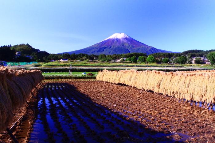 令和2年9月の富士 番外編 富士山初冠雪_e0344396_20400305.jpg