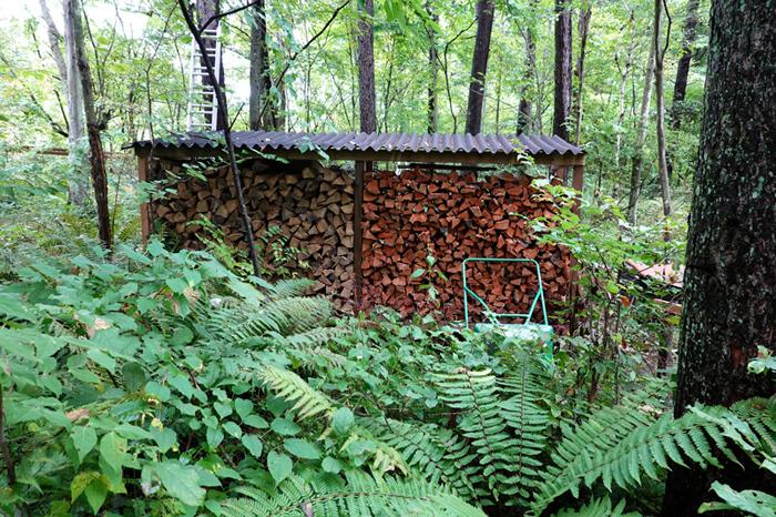 森の中のピッツァ屋さん_e0277800_17500959.jpg