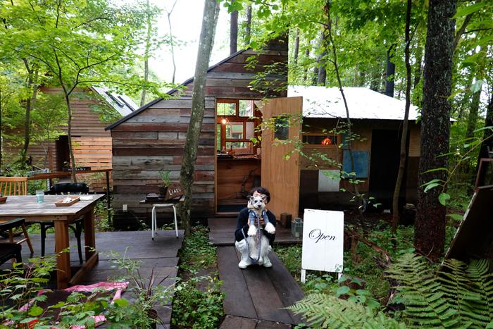 森の中のピッツァ屋さん_e0277800_18004489.jpg
