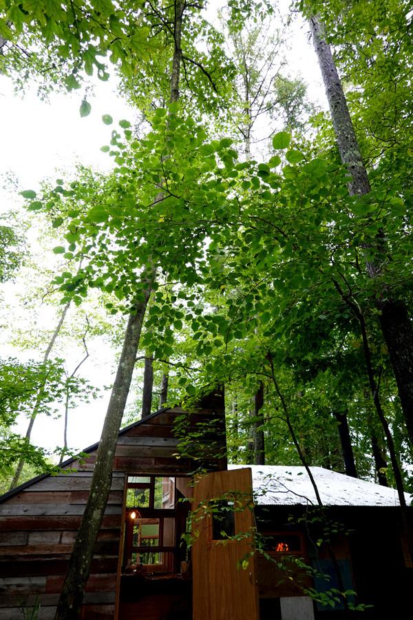 森の中のピッツァ屋さん_e0277800_20140909.jpg