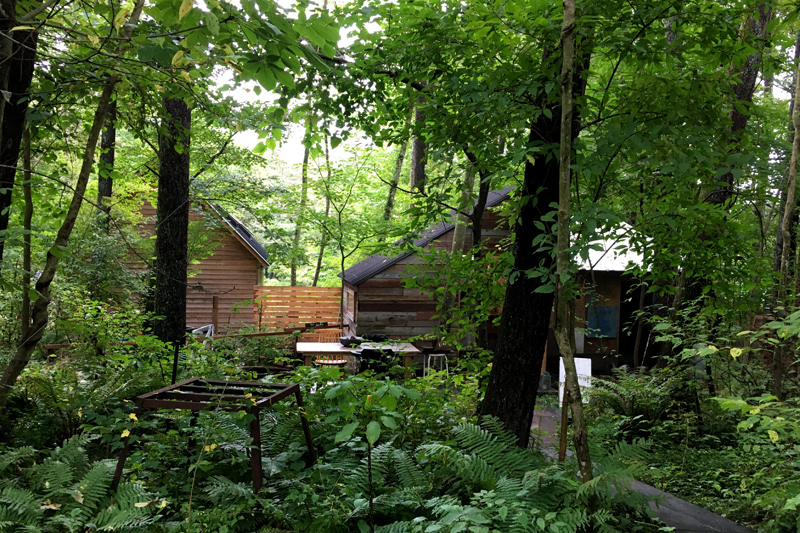 森の中のピッツァ屋さん_e0277800_20311956.jpg