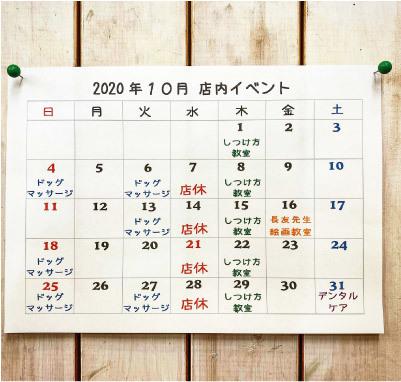 今月の予定表_a0223356_16565999.jpg