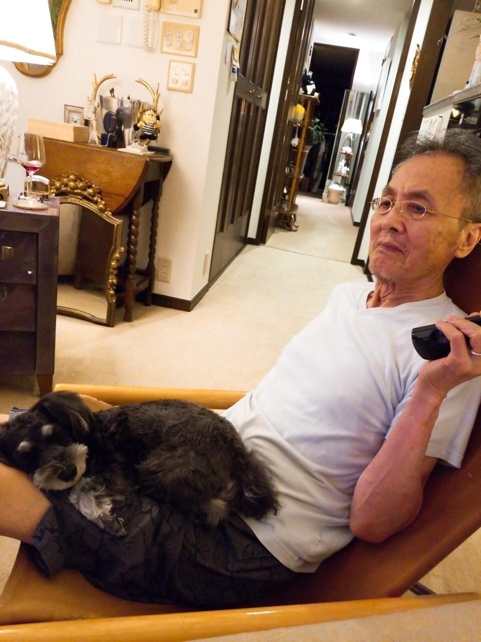 癒しの名犬 ボニーとアン最高〜♪_d0339889_20070649.jpg