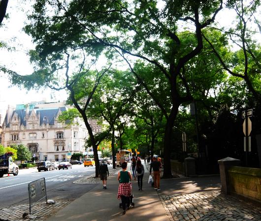 セントラル・パーク横の歩道の並木道_b0007805_04191319.jpg