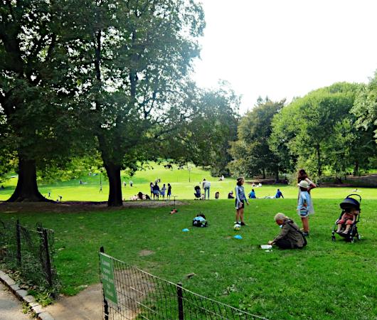 コロナ禍のNY、セントラルパークの芝生広場で青空バレエ教室_b0007805_22381145.jpg