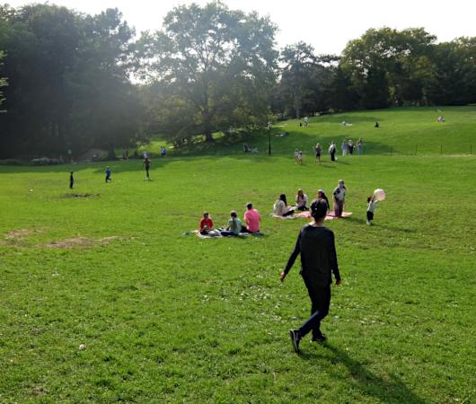 コロナ禍のNY、セントラルパークの芝生広場で青空バレエ教室_b0007805_23182969.jpg