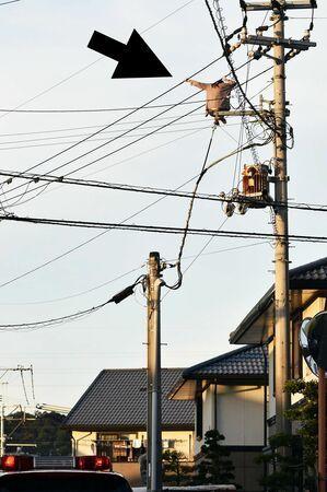 【悲報】女さんが電線にしゃがみ込みアピールするも一時停電の大騒ぎへ(*画像あり)_c0406533_18424502.jpg