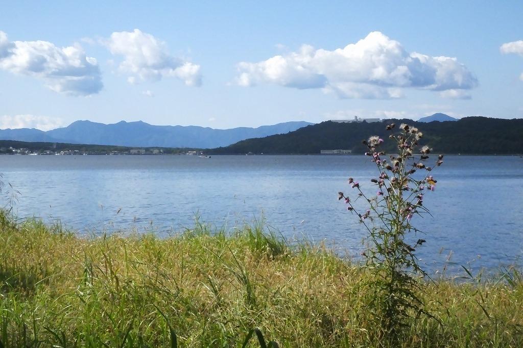 久しぶりに山中湖へ_b0236251_12084927.jpg