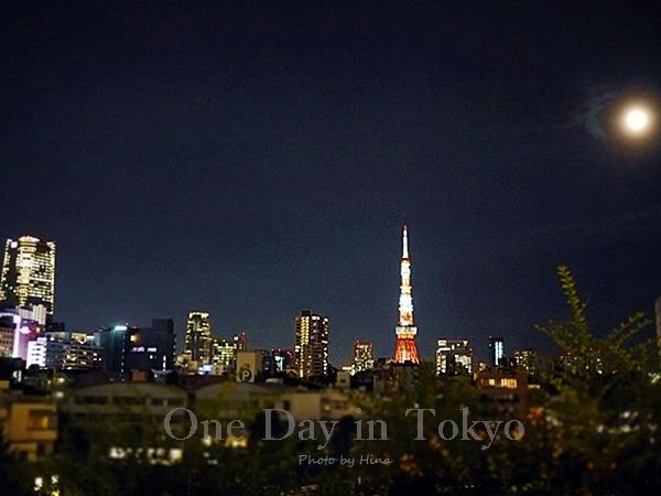 One Day in Tokyo:  お月様と東京タワー_f0245680_22325790.jpg