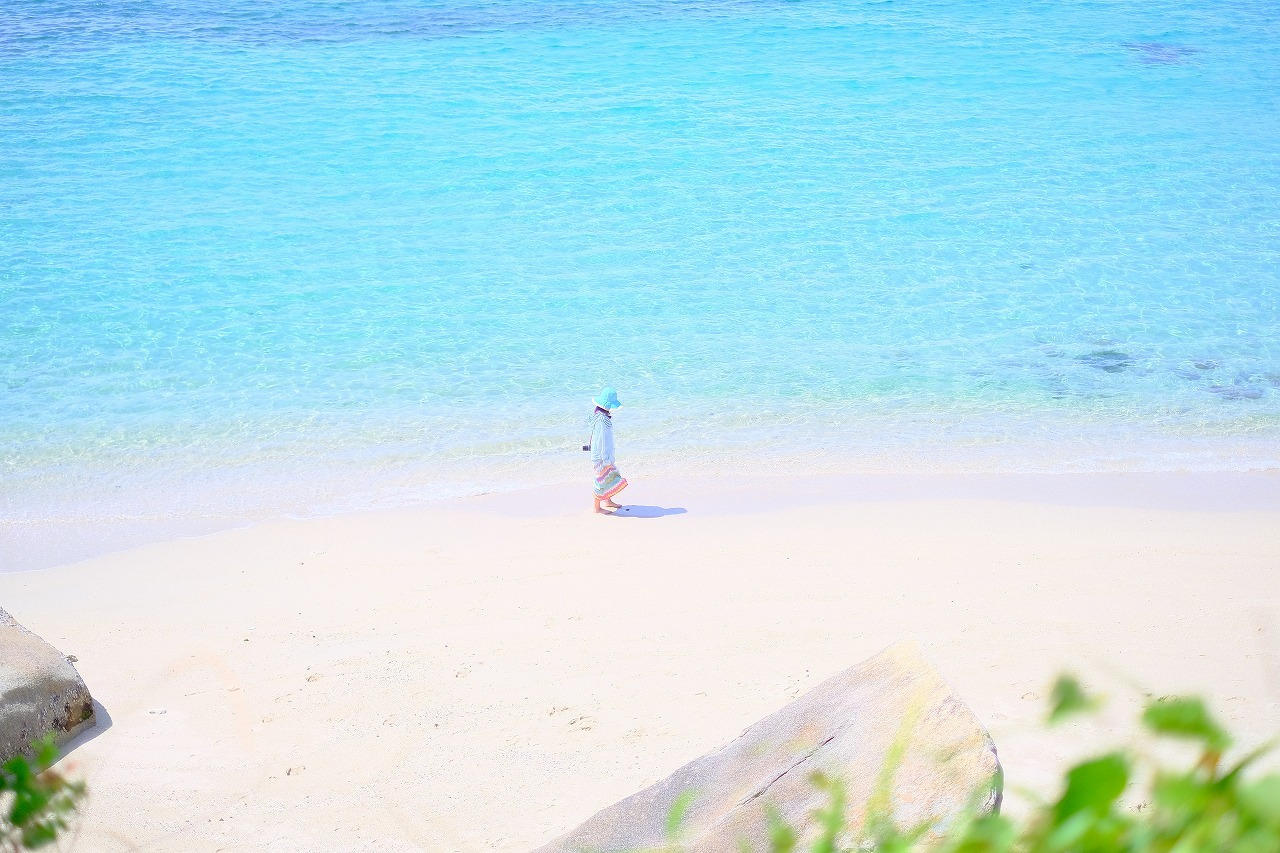 高知県柏島で「水中フォトセミナー」を開催します!_c0073387_21150163.jpg