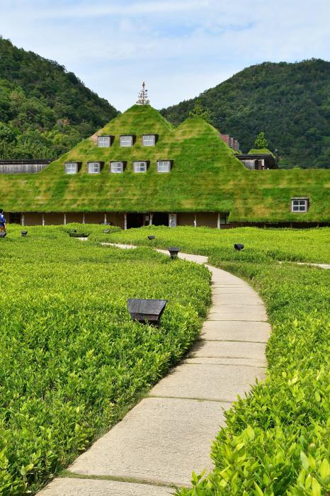 琵琶湖湖畔徘徊2020 ラ コリーナ-1_f0374895_16112537.jpg