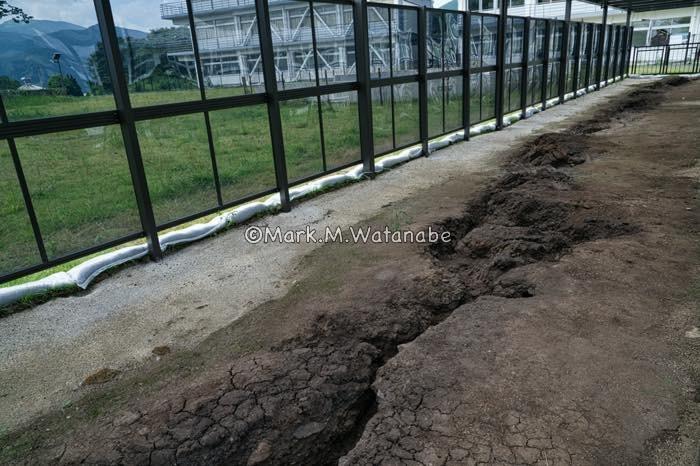 旧東海大学阿蘇校舎の地震断層_e0135098_21370744.jpg