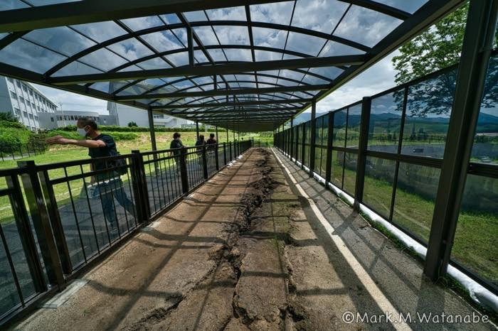 旧東海大学阿蘇校舎の地震断層_e0135098_21372643.jpg