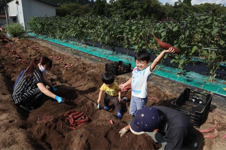 10月1日 サツマイモ掘り_f0067514_20370572.jpg