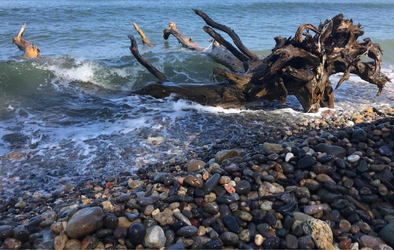 【海で拾った石】 9月最後の石拾い_f0169147_21250112.jpg