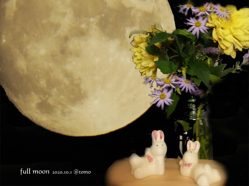 中秋の名月_f0067179_23501988.jpg
