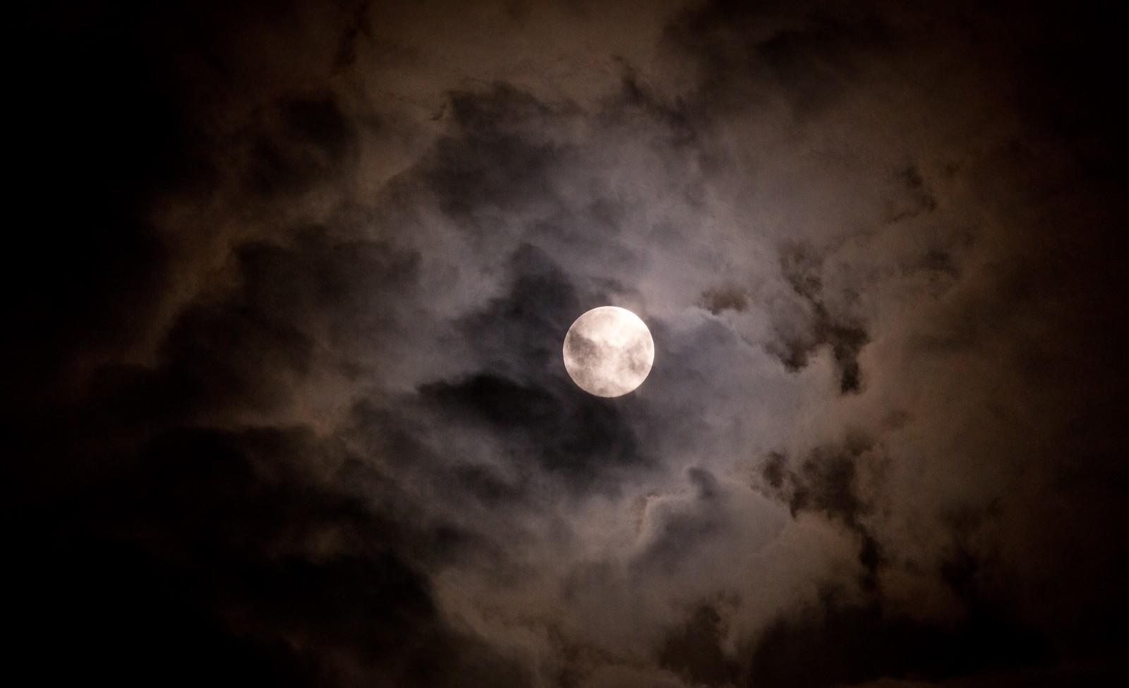 満月の夜のニタリ_d0115650_03105201.jpg