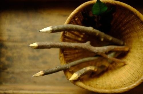 vol.116 「とをが」木の枝えんぴつづくりをします_a0123451_23390720.jpg