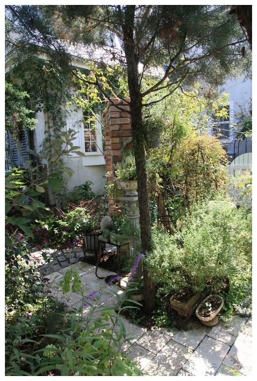 秋の natu garden_b0207995_22523355.jpg
