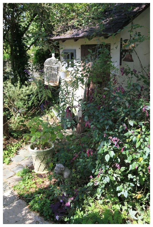 秋の natu garden_b0207995_22524857.jpg
