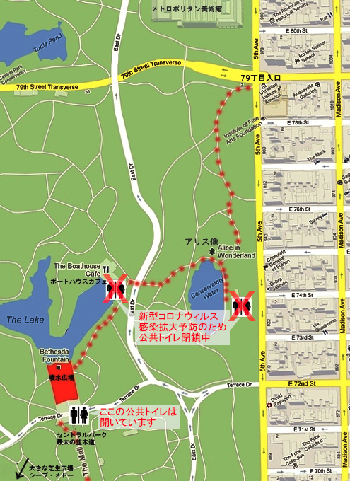 コロナ禍のセントラルパーク、お散歩風景(大切なトレイ情報も)_b0007805_02562909.jpg