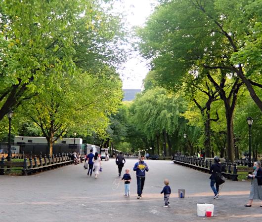 コロナ禍のセントラルパーク、お散歩風景(大切なトレイ情報も)_b0007805_03093171.jpg