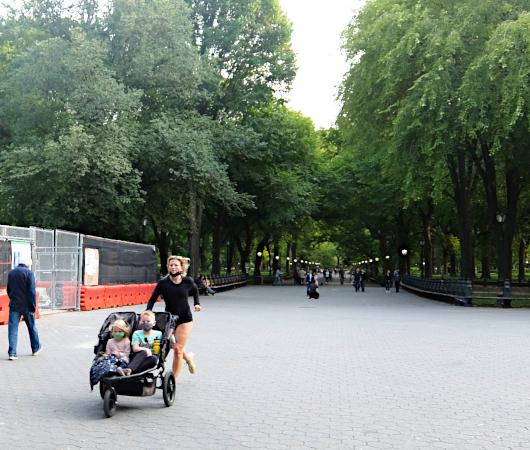 コロナ禍のセントラルパーク、お散歩風景(大切なトレイ情報も)_b0007805_03095481.jpg