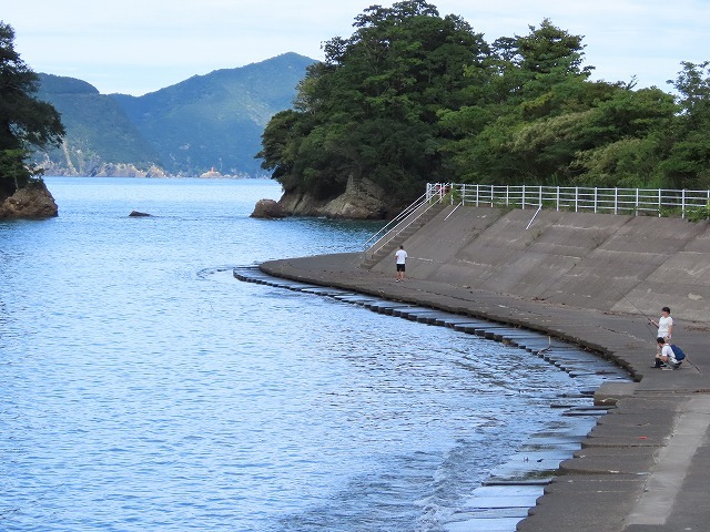 散歩で出会った光景(撮影:9月26)_e0321325_18542005.jpg