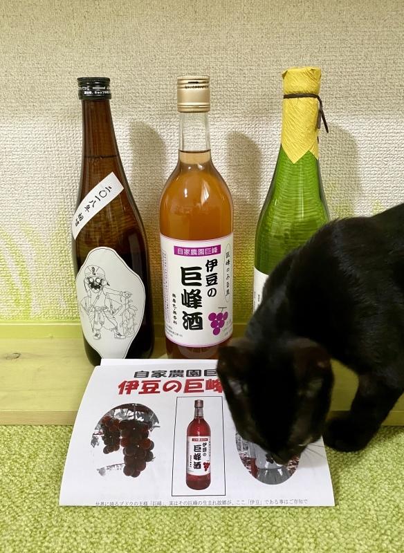 地酒3種☆☆☆_b0194630_08174023.jpeg