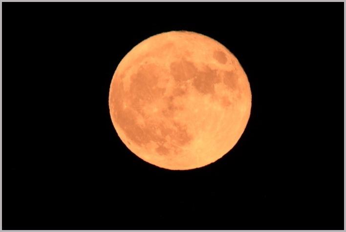 秋深まる満月_a0123239_08203884.jpg