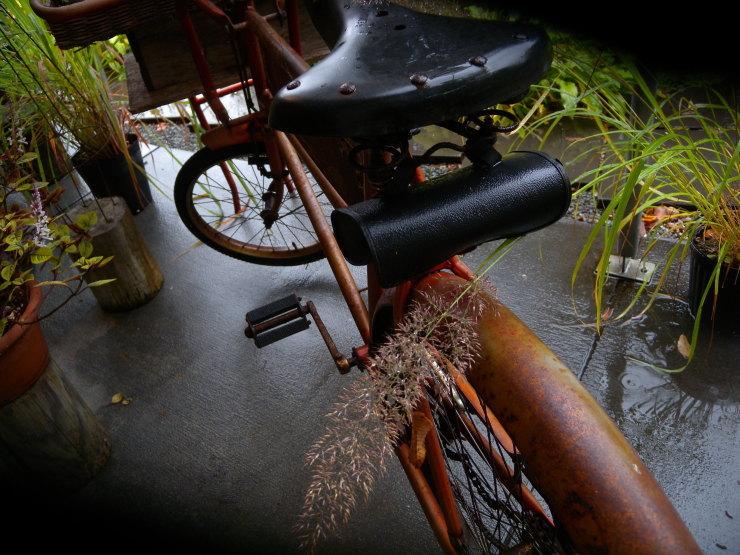 自転車       神無月_f0378554_14091268.jpg