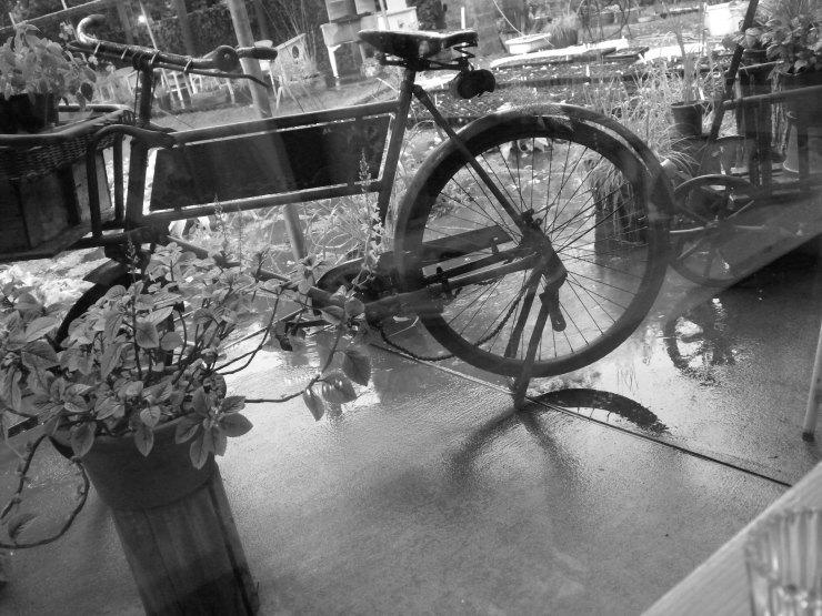 自転車       神無月_f0378554_14111637.jpg
