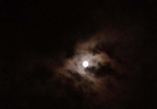 まん丸い=満月=・・・十五夜_d0019074_07032590.jpg
