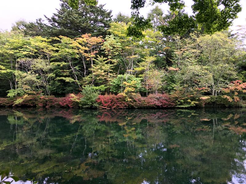 軽井沢の秋散歩_e0277800_15300156.jpg