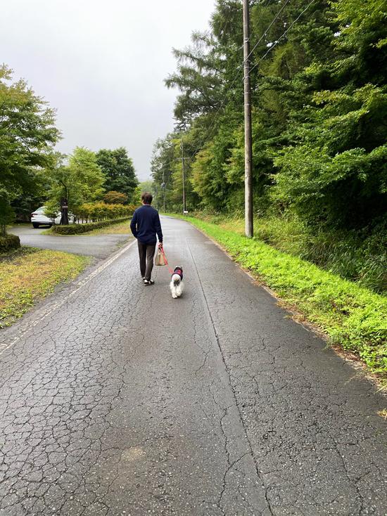 軽井沢の秋散歩_e0277800_23055806.jpg