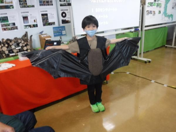 自然学習講座「コウモリウォッチング」を開催しました!_d0121678_16383703.jpg