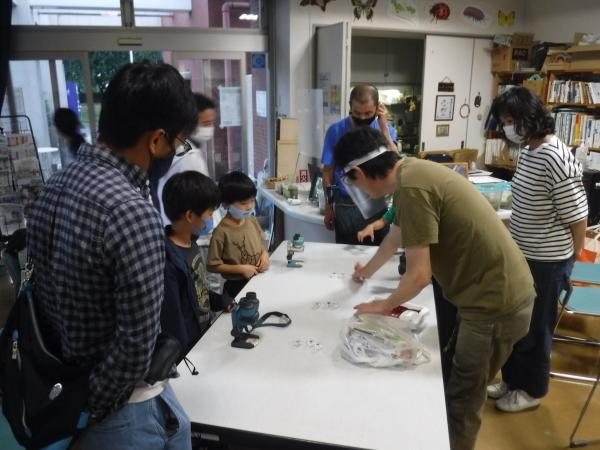 自然学習講座「コウモリウォッチング」を開催しました!_d0121678_16384041.jpg
