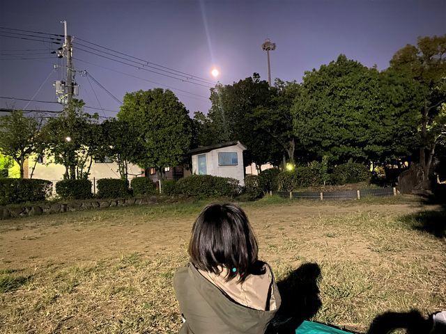 中秋の名月に虫と航空機の声_d0137326_21093604.jpg