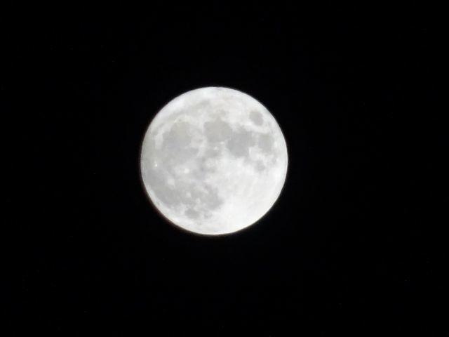 中秋の名月に虫と航空機の声_d0137326_21281072.jpg