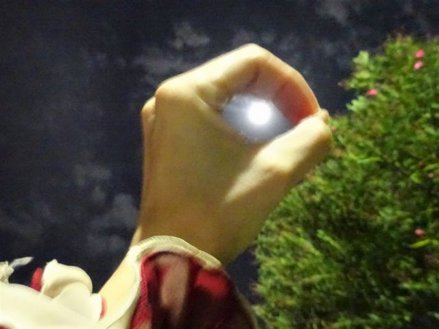 中秋の名月に虫と航空機の声_d0137326_23251996.jpg
