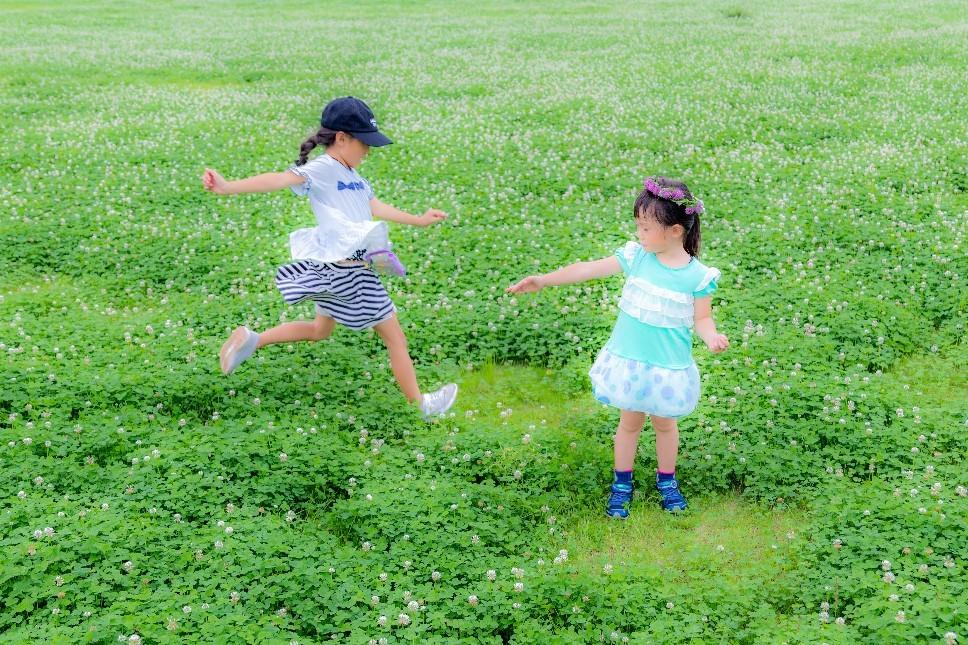 第29回埼玉県都市公園写真コンクール 知事賞_b0251929_17425170.jpg