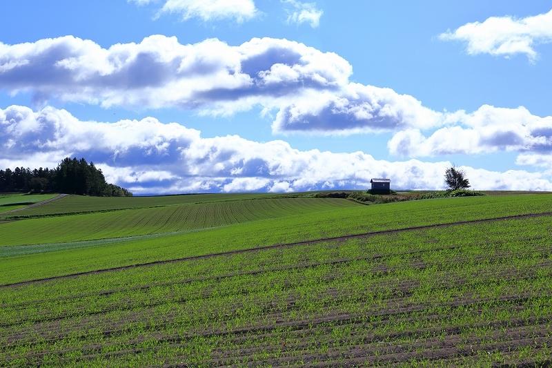 素晴らしき丘の風景 9月28日 5/5_e0405576_03503141.jpg