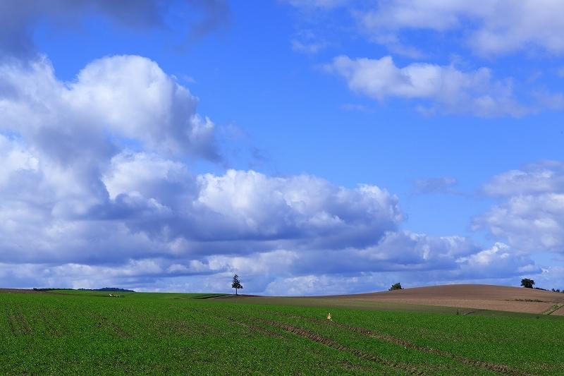 素晴らしき丘の風景 9月28日 5/5_e0405576_03504407.jpg