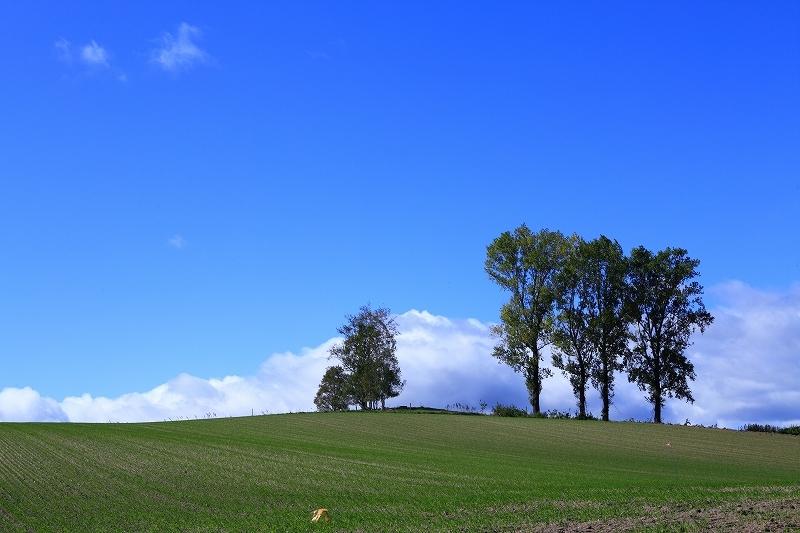 素晴らしき丘の風景 9月28日 5/5_e0405576_03505456.jpg
