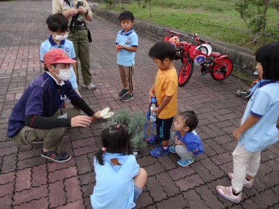 富浜緑地に花壇ができました!_d0338682_12480017.jpg